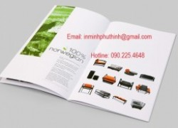 In Catalogue giá rẻ ở đâu Từ Liêm, Đông Anh