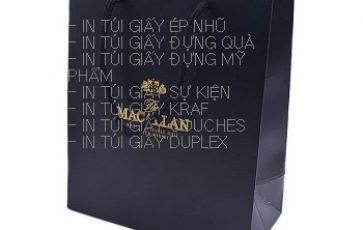 In Túi Giấy giá rẻ ở đâu Bắc Ninh | In vỏ hộp uy tín
