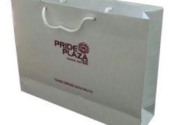 In túi giấy giá rẻ ở đâu Gia Lâm – In túi giấy lấy nhanh.